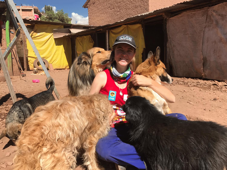 Peru Dog Rescue